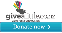 Givealittle_donate2